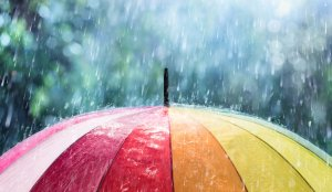 7 Tips to Stay Healthy This Monsoon