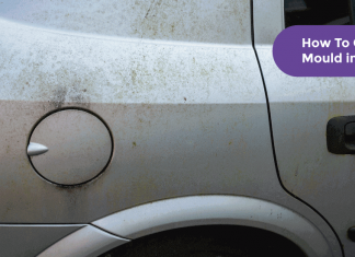 How To Get Rid of Mould in Your Car